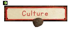btn-culture.png